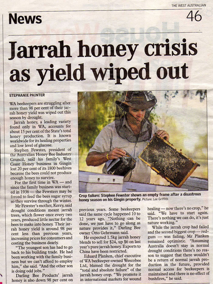 jarrah-honey-crisis-wipedout